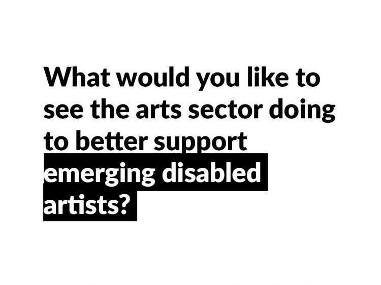 The question used to frame No Jobs in the Arts number four, 'What would you like to see the arts sector doing to better support emerging disabled artists?'.