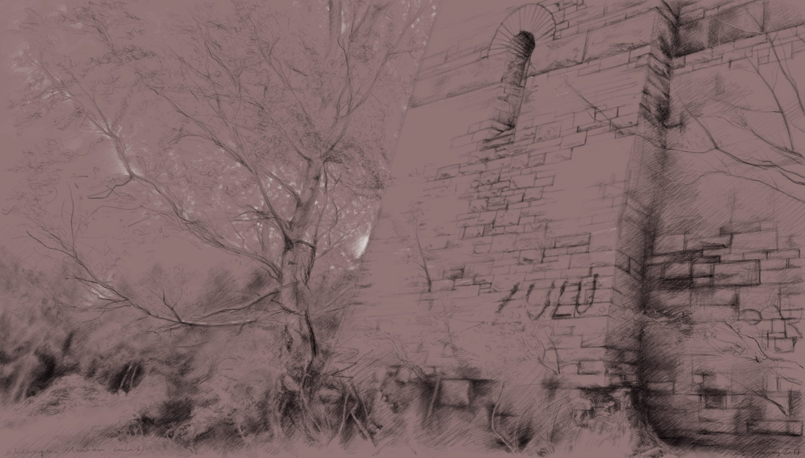 Mik Godley, pencil drawing on pink